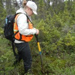 Colette Brandt '09 performs wetland delineation in Anchorage, Alaska.
