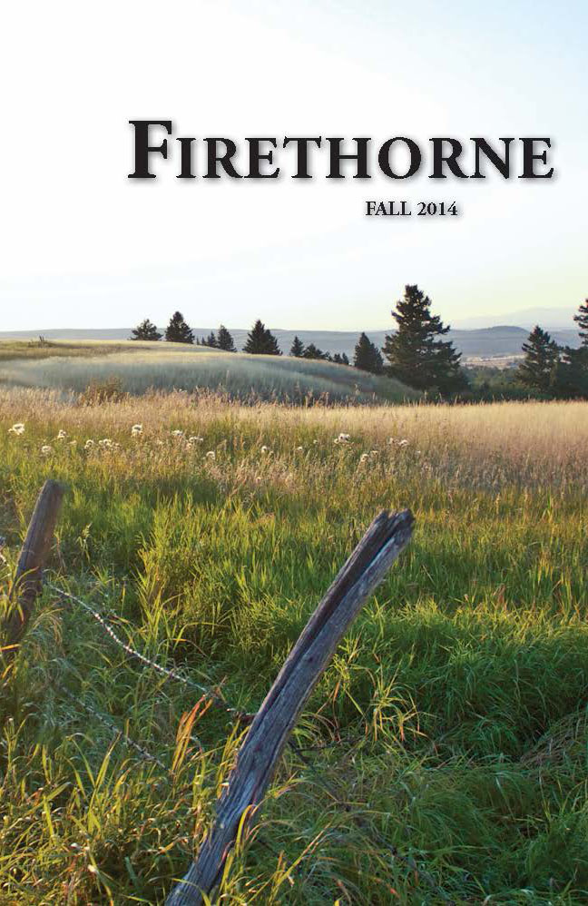"The cover art for the Fall 2014 issue of Firethorne is titled ""Yurtview"" by first-year student Tyler Brower."
