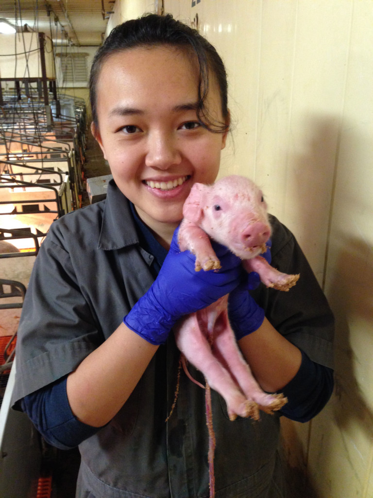 MJ Sun with Pig